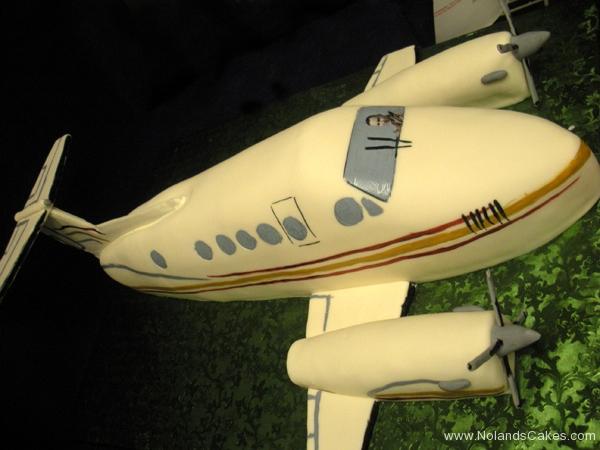 289, birthday, plane, airplane, edible image, carved