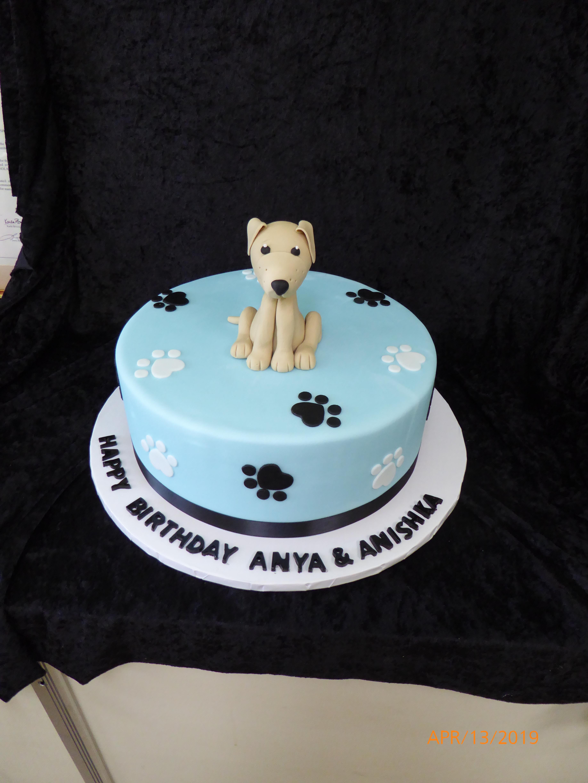 3271, birthday, dog, paw prints, paw print, figure, figures, blue, black, white