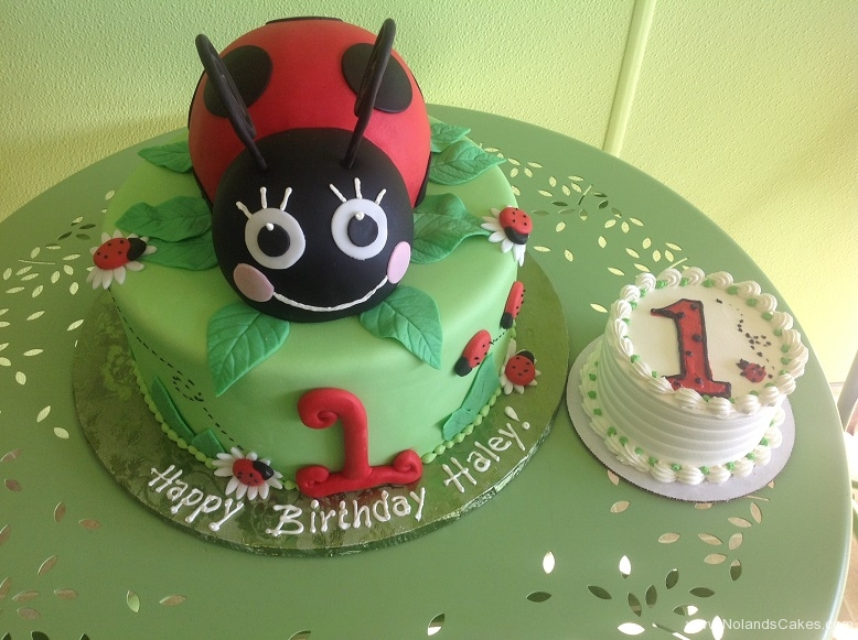 768, first birthday, 1st birthday, lady bug, ladybug, leaves, leaf, red, green, flower, flowers, smash cake